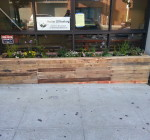 Planters provide a beautiful platform for our Urban Wildlife Exhibit