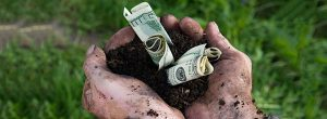 money-farmer-crops-735-270