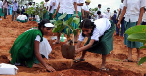 Importance of Afforestation in India | Matter Of Trust