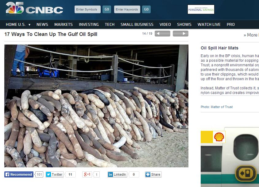 17 Ways To Clean Up The Gulf Oil Spill